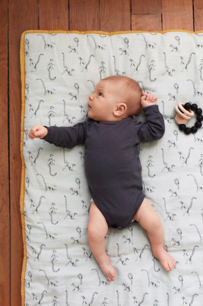 Lemur Play Mat